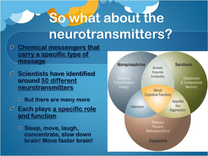 So what about the neurotransmitters?