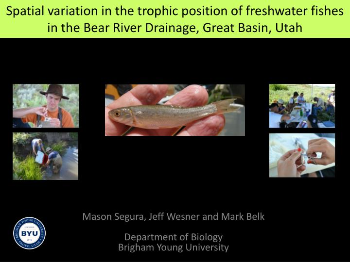 Spatial variation in the trophic position of freshwater fishes in the Bear River Drainage,