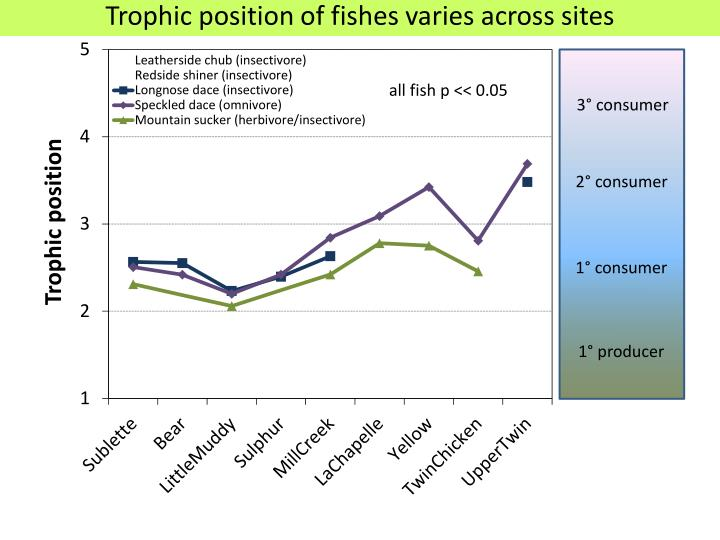 Trophic position of fishes varies across sites