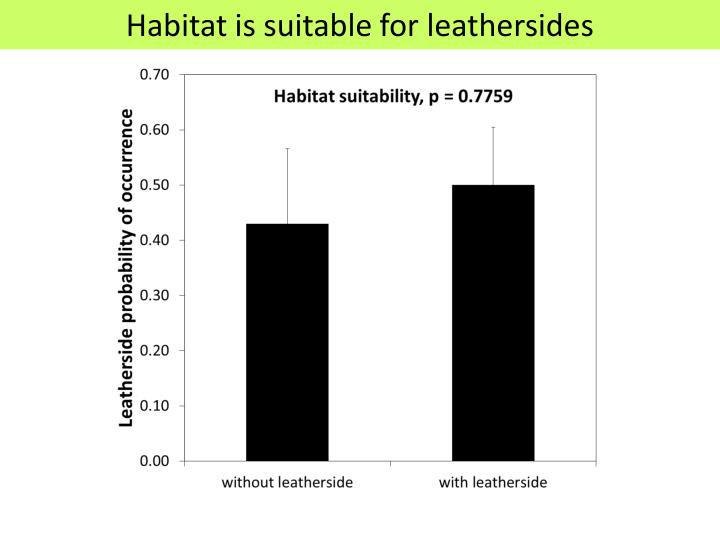Habitat is suitable for leathersides
