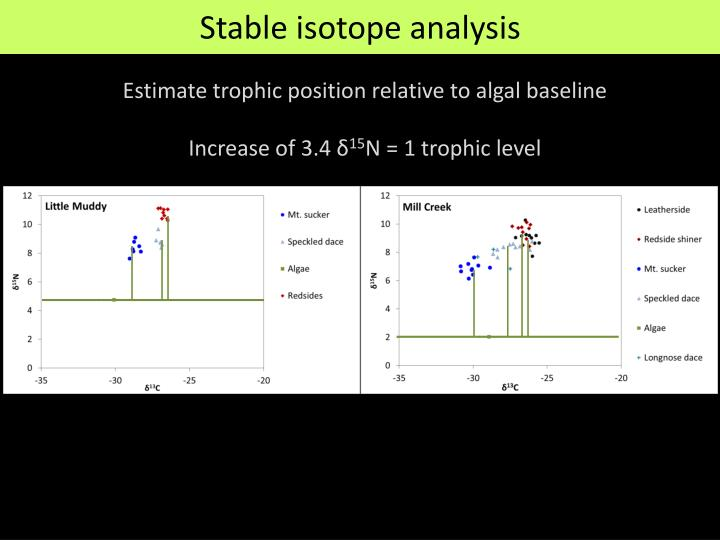 Estimate trophic position relative to algal baseline