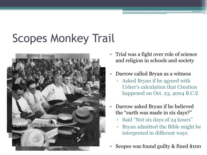 Scopes Monkey Trail