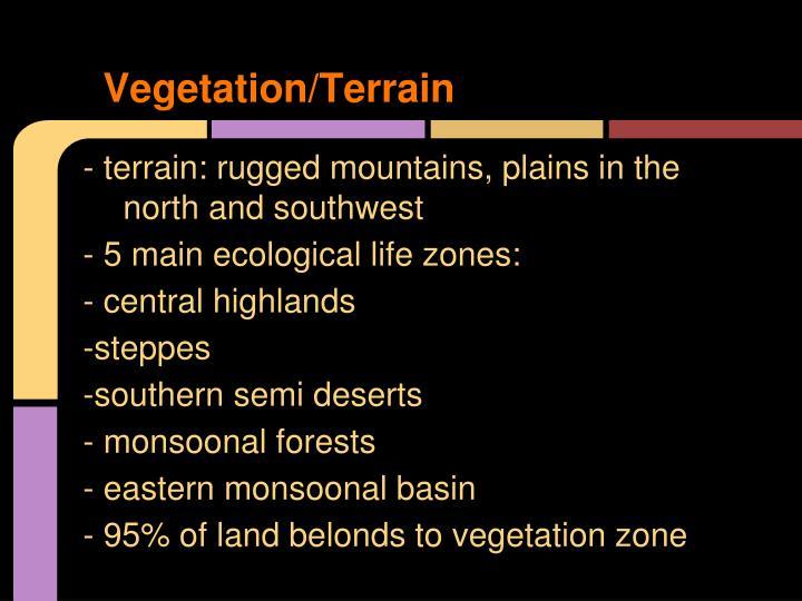 Vegetation/Terrain