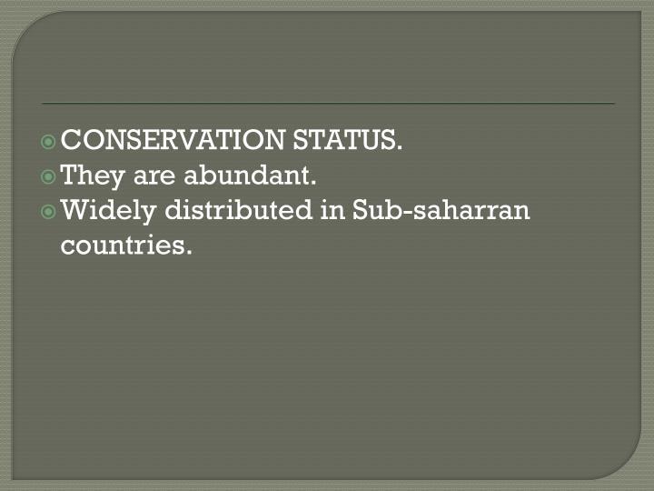 CONSERVATION STATUS.