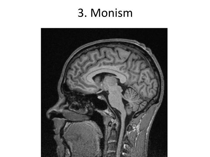 3. Monism
