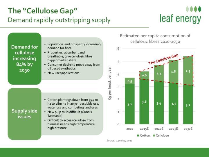 "The ""Cellulose Gap"""