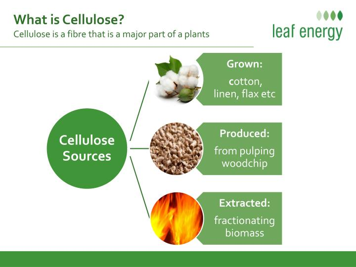 What is Cellulose?