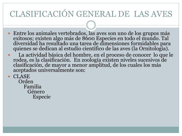 CLASIFICACIÓN GENERAL DE  LAS AVES