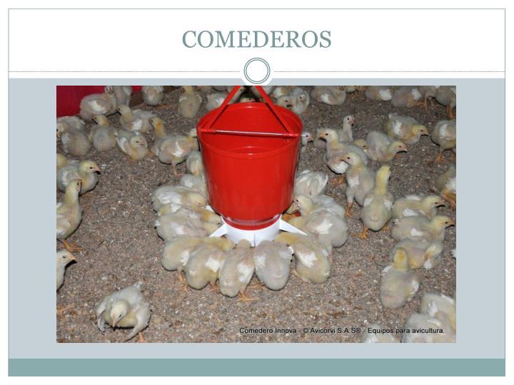 COMEDEROS