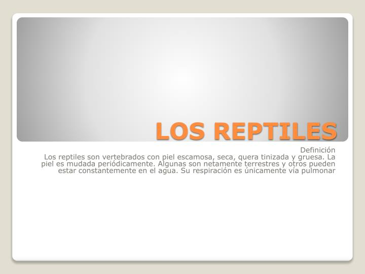 LOS REPTILES