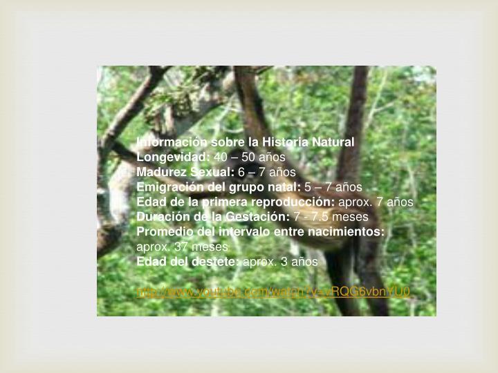 Información sobre la Historia Natural