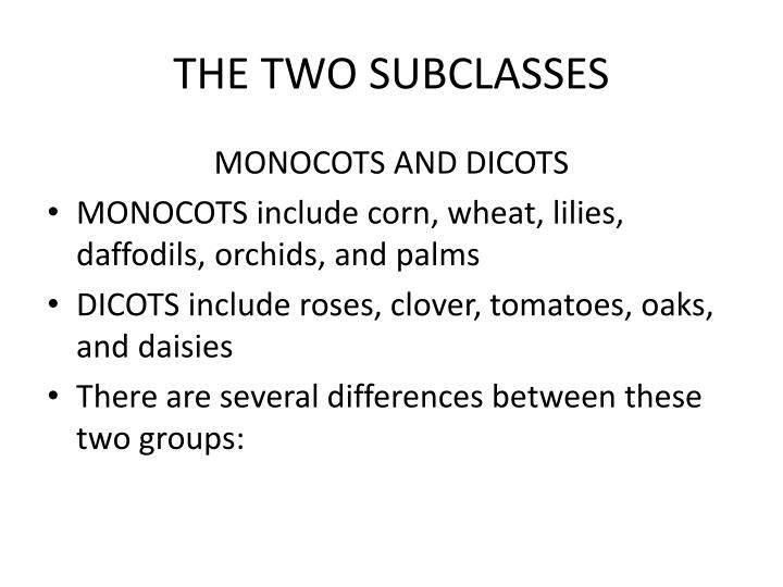 THE TWO SUBCLASSES