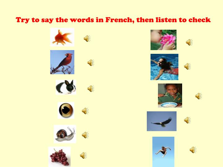 Try to say the words in french then listen to check
