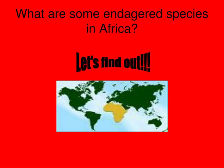 What are some endagered species in Africa?