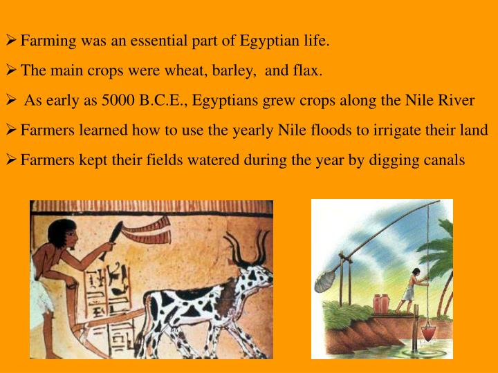 Farming was an essential part of Egyptian life.