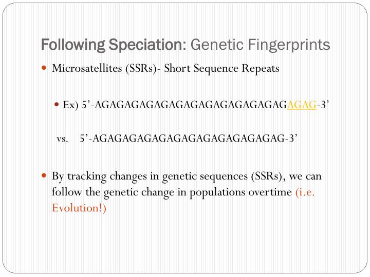 Following Speciation