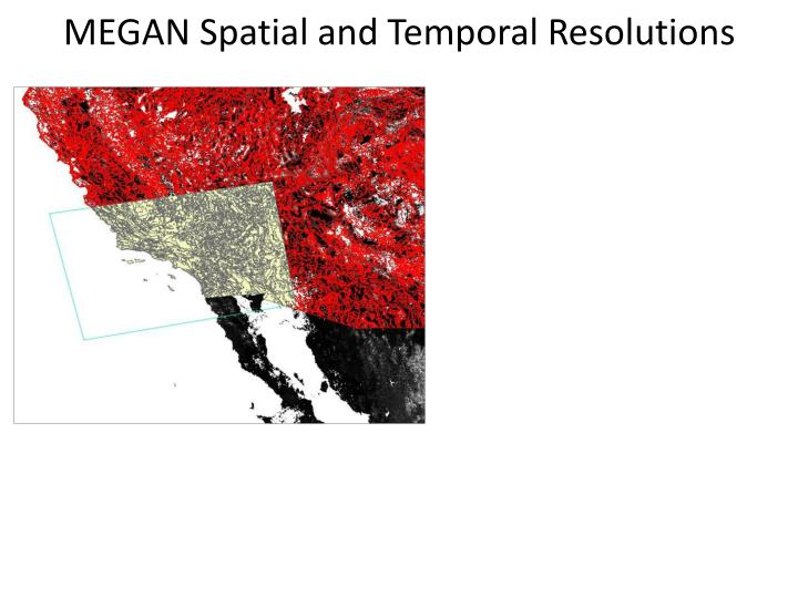 MEGAN Spatial and Temporal Resolutions