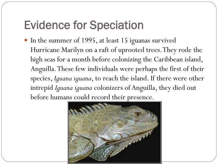 Evidence for Speciation