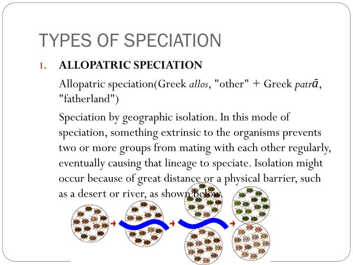 TYPES OF SPECIATION
