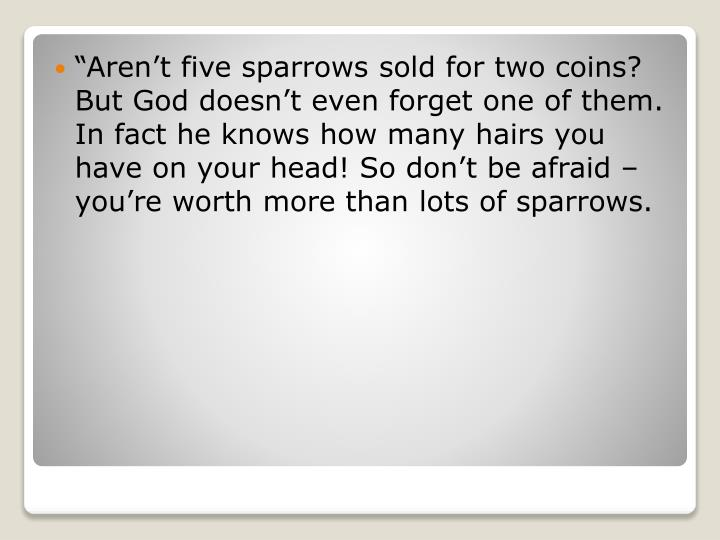 """Aren't five sparrows sold for two coins? But God doesn't even"