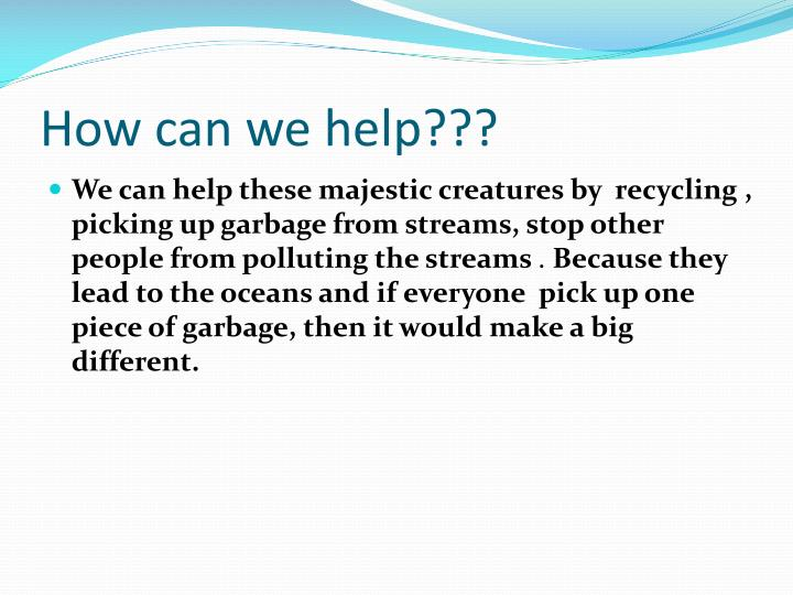 How can we help???