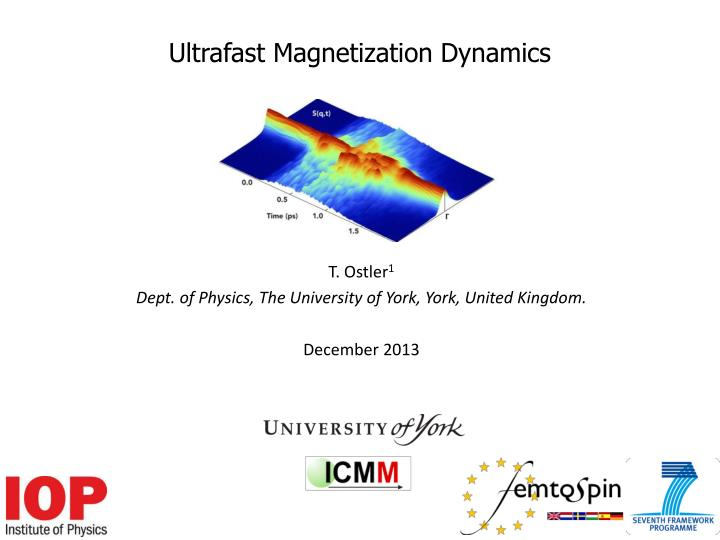 Ultrafast magnetization dynamics