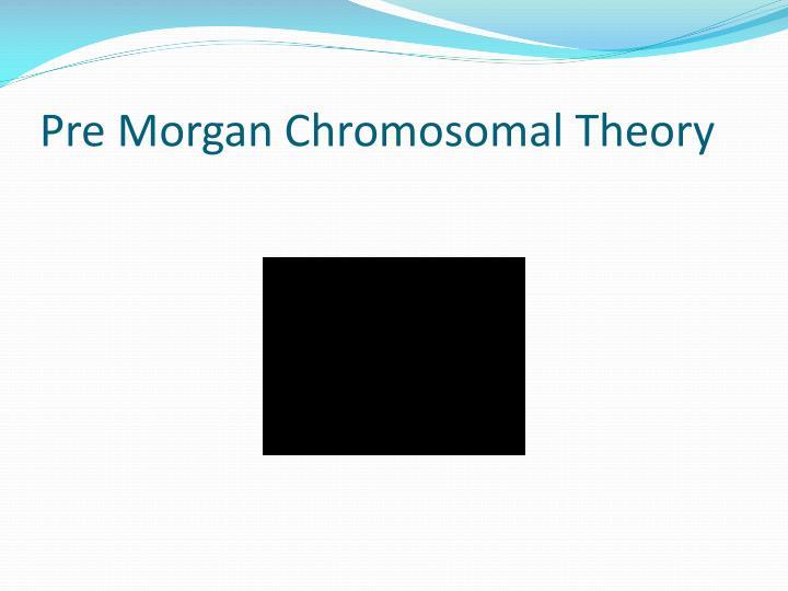 Pre Morgan Chromosomal Theory