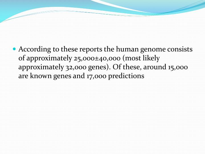 According to these reports the human genome consists of approximately 25,000±40,000 (most likely approximately 32,000 genes). Of these, around 15,000 are known genes and 17,000 predictions
