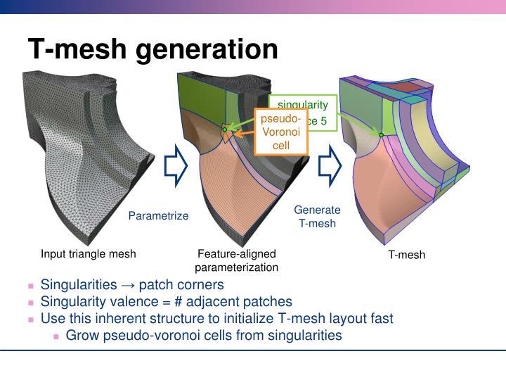 T-mesh generation