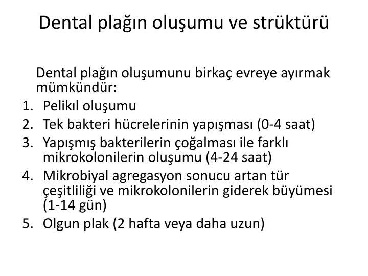 Dental plağın oluşumu ve strüktürü