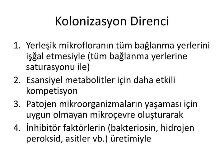 Kolonizasyon D
