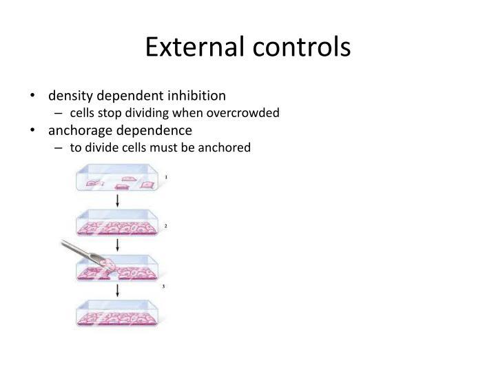 External controls