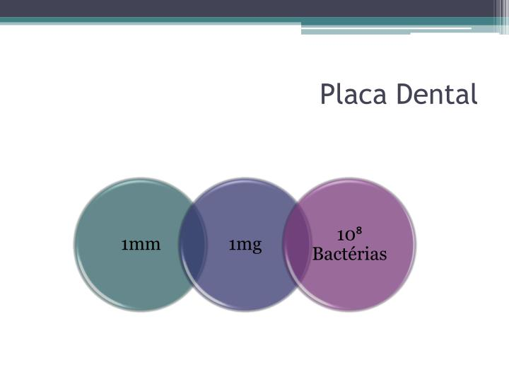 Placa Dental