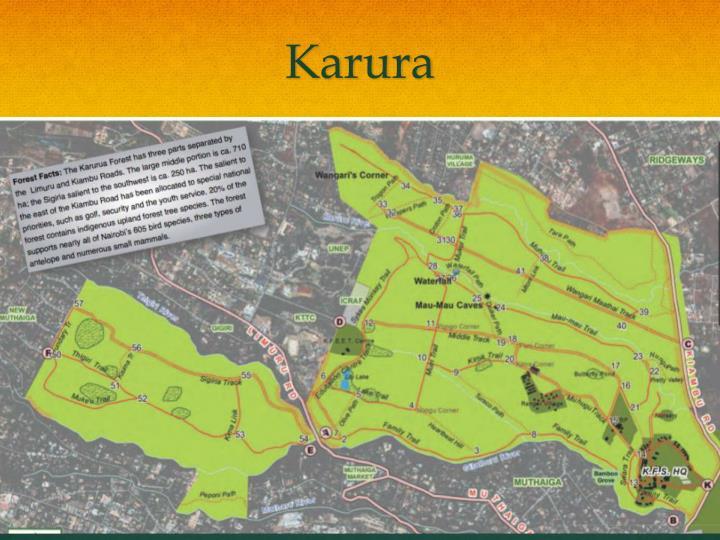 Karura