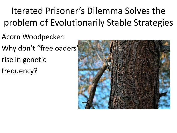 Iterated Prisoner's Dilemma Solves the problem of Evolutionarily Stable Strategies