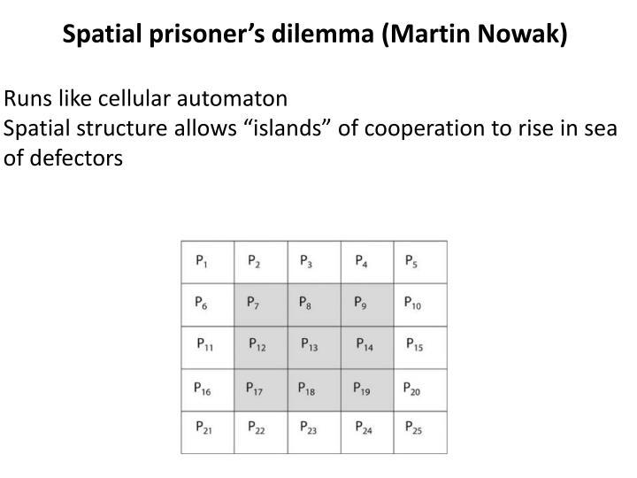 Spatial prisoner's dilemma (Martin Nowak)