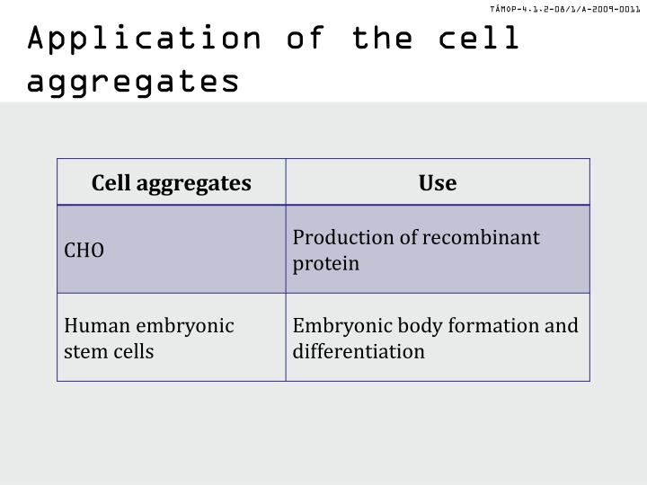 Application of the cell aggregates