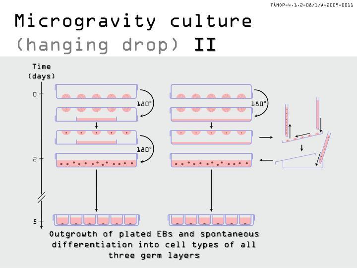 Microgravity culture