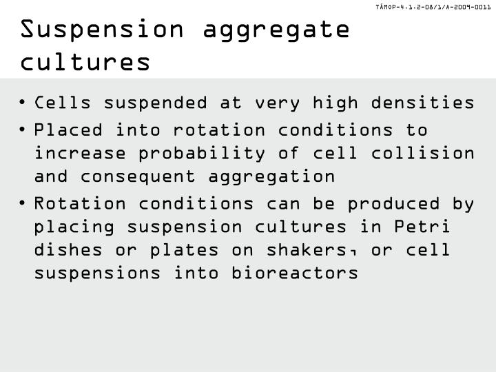 Suspension aggregate cultures