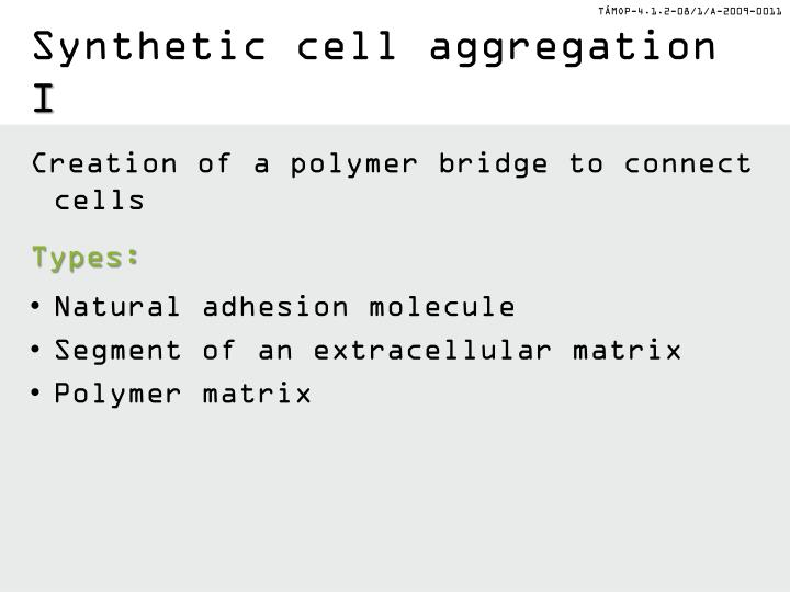 Synthetic cell aggregation