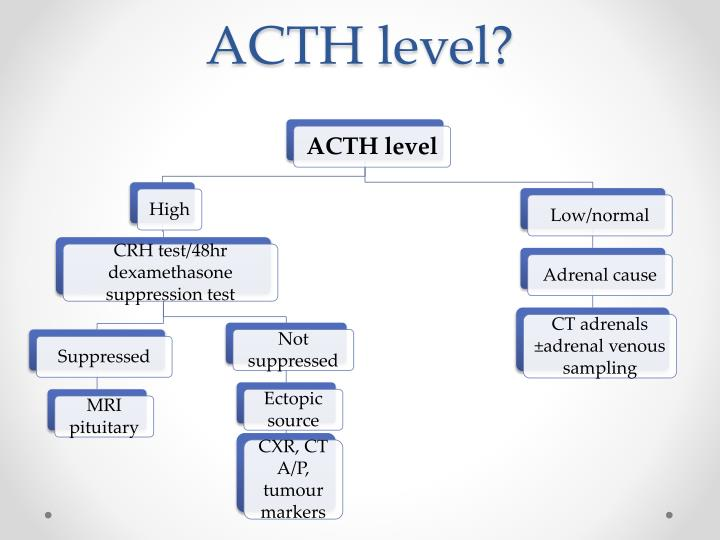 ACTH level?