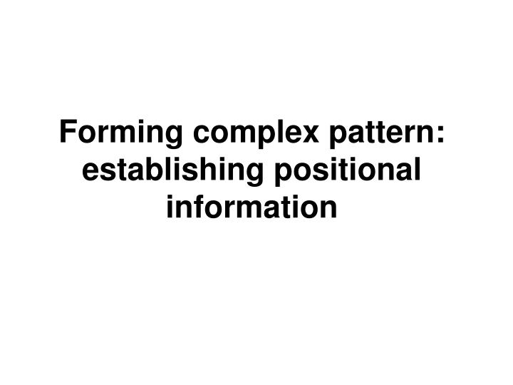 Forming complex pattern: establishing positional information