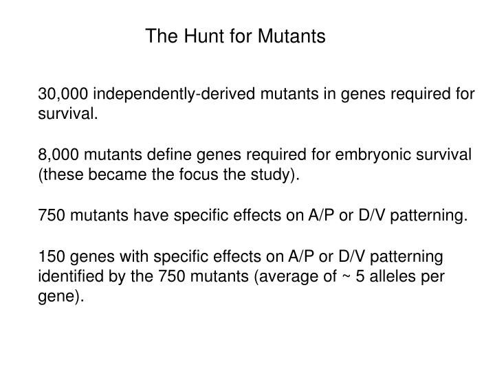 The Hunt for Mutants