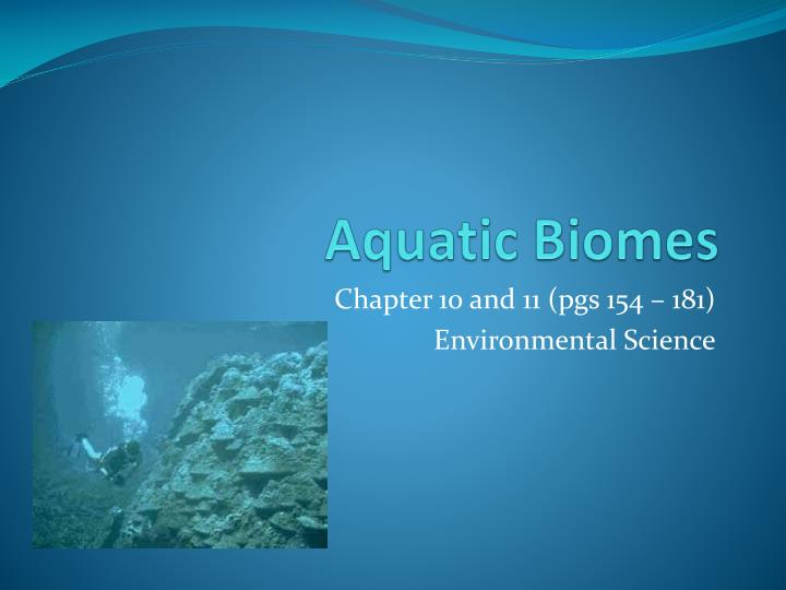 aquatic biomes essay