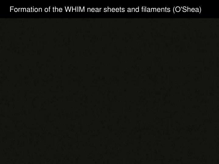 Formation of the WHIM near sheets and filaments (O'Shea)