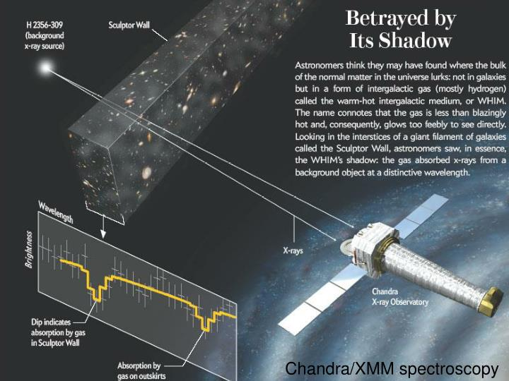 Chandra/XMM spectroscopy