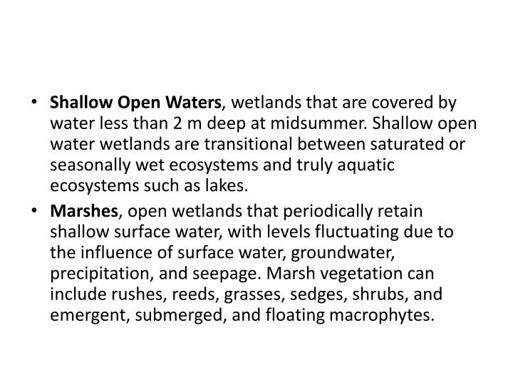 Shallow Open Waters