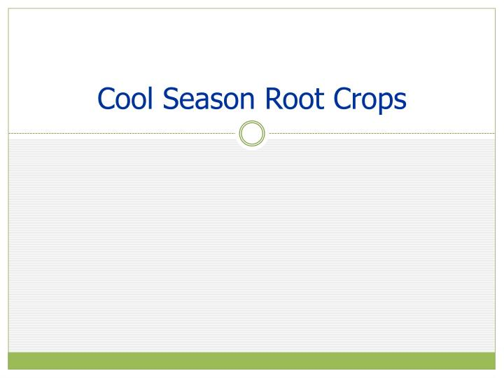 Cool Season Root Crops