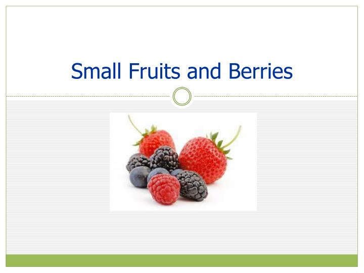 Small Fruits and Berries