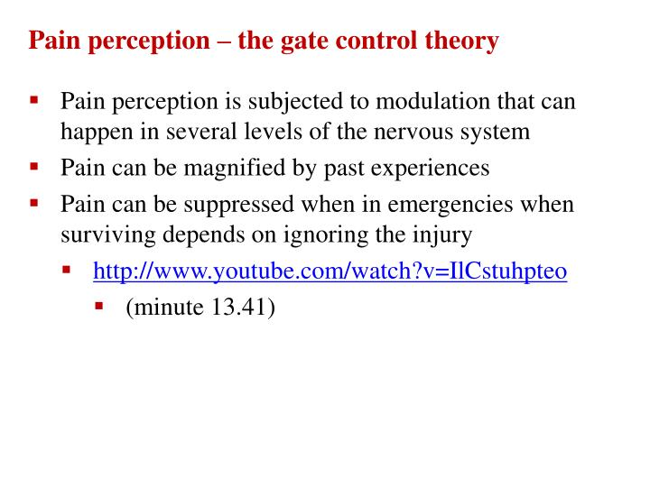 Pain perception – the gate control theory